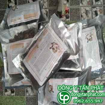 Phân phối mua bán hà thủ ô tại Bắc Giang giá tốt